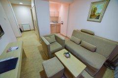 4-Standard-apartman-dnevna.jpg
